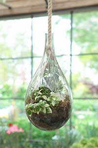 Indoor garden planters choosing the right container for your plants indoor garden planters hanging terrarium workwithnaturefo